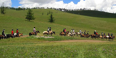 Horse trekking to Terelj National Park & Gunjiin Sum Temple