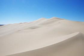ホンゴル砂漠