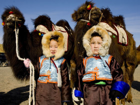 Mongolie Festival Chameau Best Of